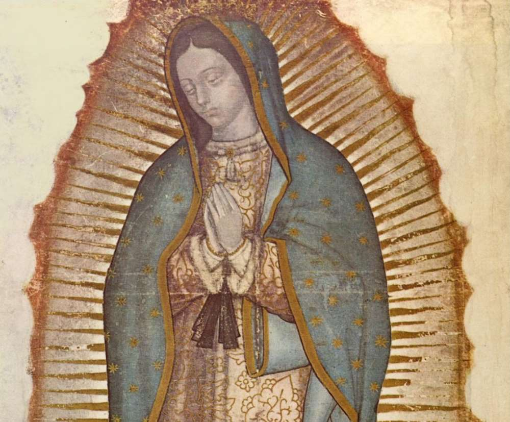 guadalupe 6